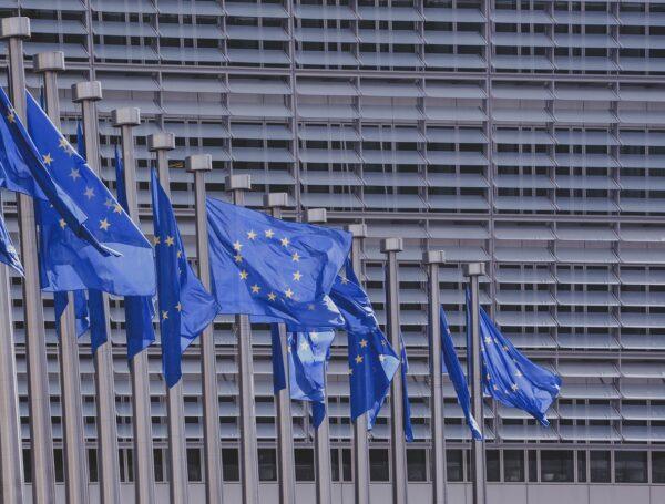 Opis projektu europejskiego
